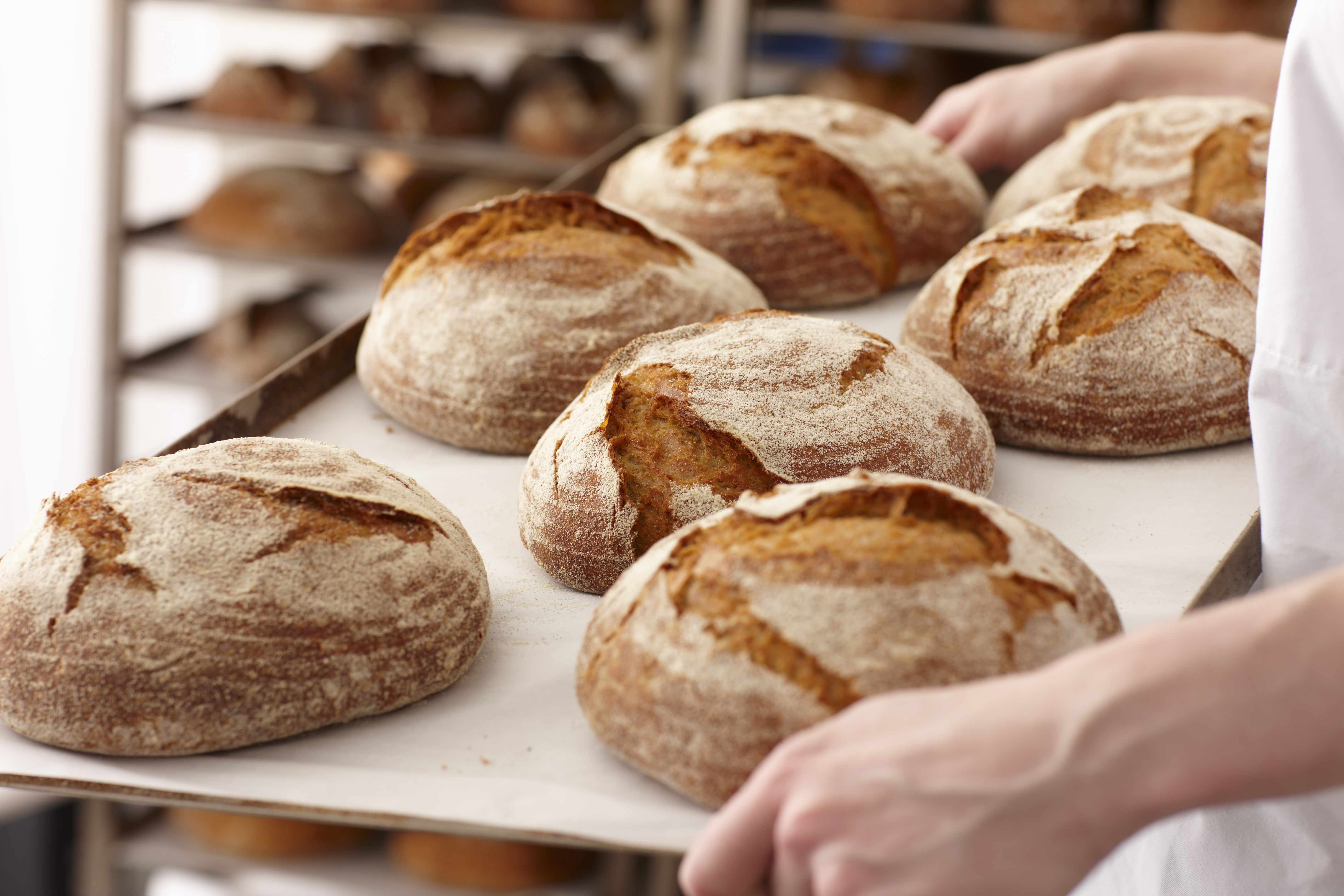 What Is Gluten? And Why Does Everyone Avoid It?